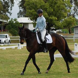 2017 October 15th T-Shirt Dressage Competition